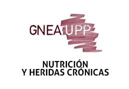 Nutrición y heridas crónicas